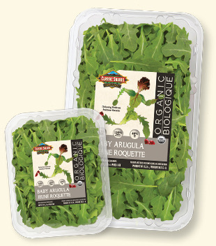 classic-baby-organic-arugula-whistler-grocery-delivery-service