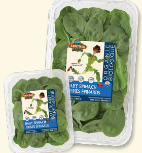 classic-salads-baby-spinach-organic-whistler-grocery-delivery-service