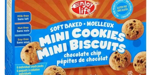 enjoy-life-ssoft-baked-chocolate-cookies-whistler-grocery-service-delivery